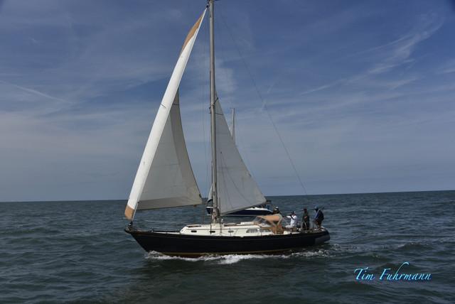 SARW-Shore-2021-04-23-715.jpg