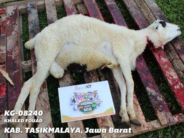 Khaled-Fouad-Tasikmalaya-Jawa-Barat-KG-08240.png
