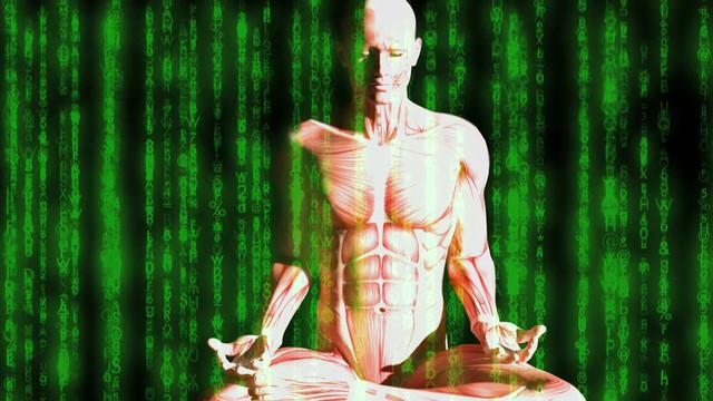 Samadhi-Maya-the-Illusion-of-the-Self-2017-1080p-WEBRip-x265-RARBG-mp4-snapshot-16-49-2021-06-09-15-