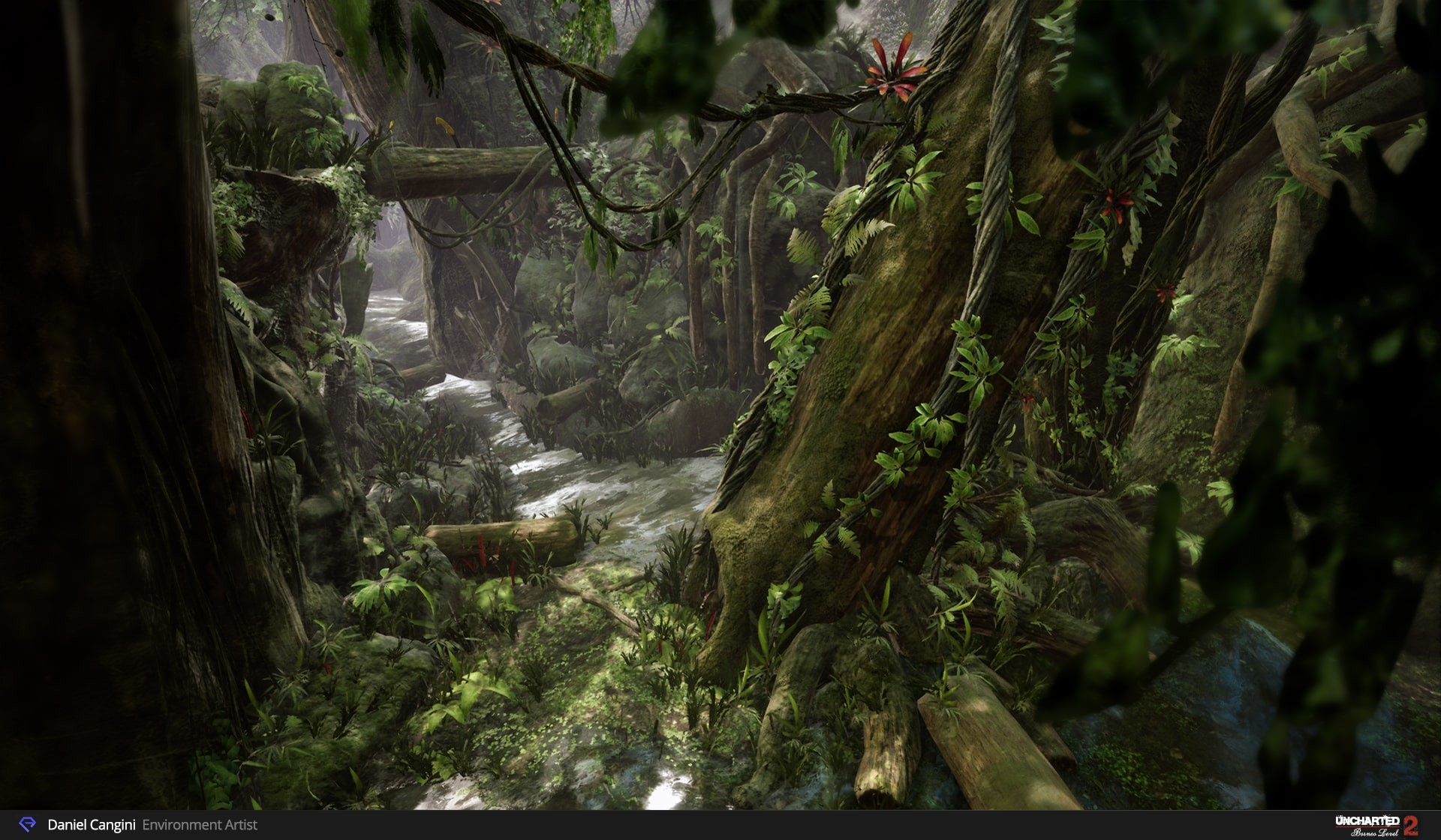 https://i.ibb.co/WnQqsKh/daniel-cangini-03-uncharted2-borneo-day-environment.jpg