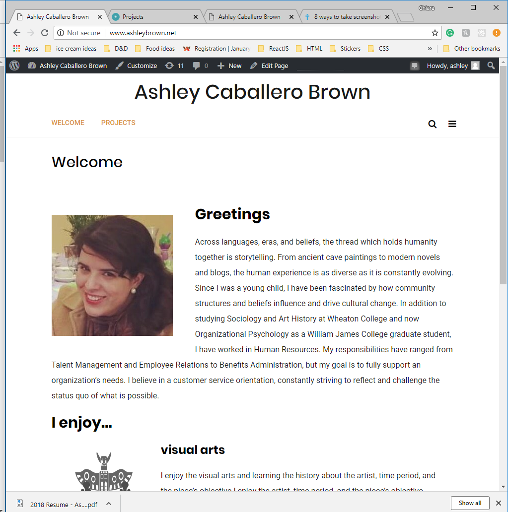 screen shot of Ashley's site