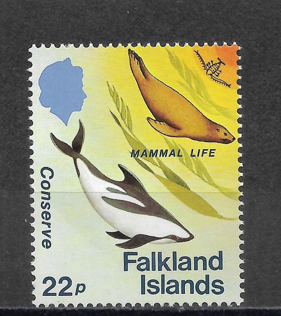 Wale-Falkland-417
