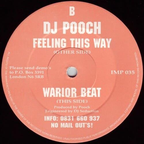 Download DJ Pooch - Feeling This Way / Warior Beat mp3