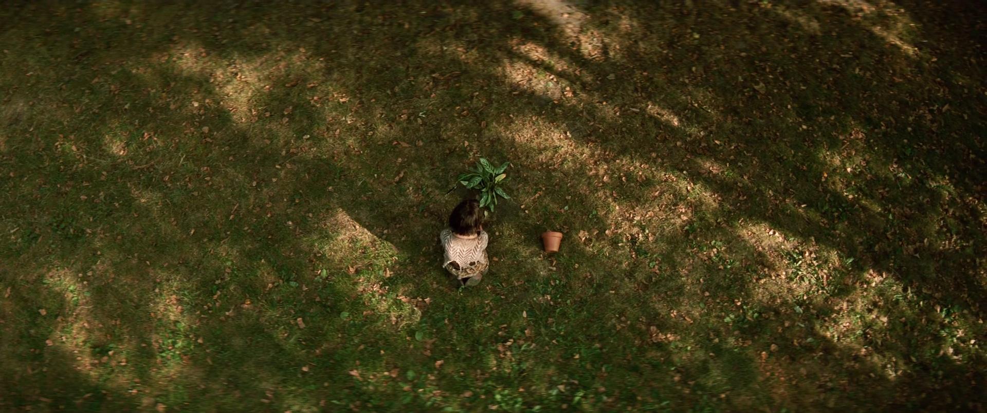 El Perfecto Asesino [Léon] (1994) Extended x265 1080p