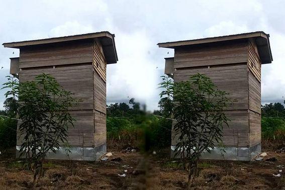 Cara Membangun Rumah Walet Sederhana