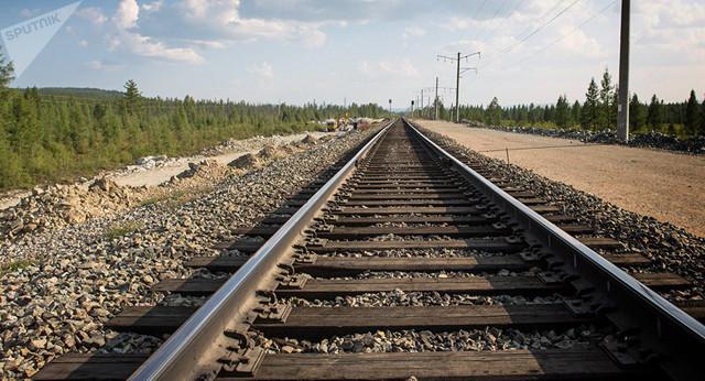 В Николаевской области девушка-подросток бросилась под поезд