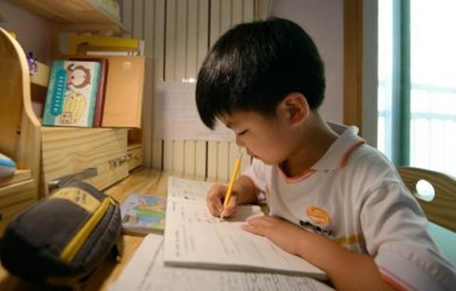 Study-International