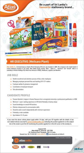4627c-HR-Executive