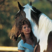 shania-tweet021719-horse
