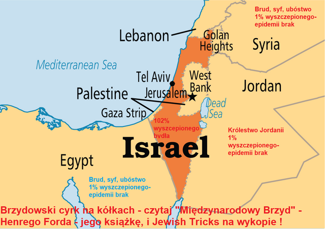 https://i.ibb.co/X2K4YB7/israel-map-1.png