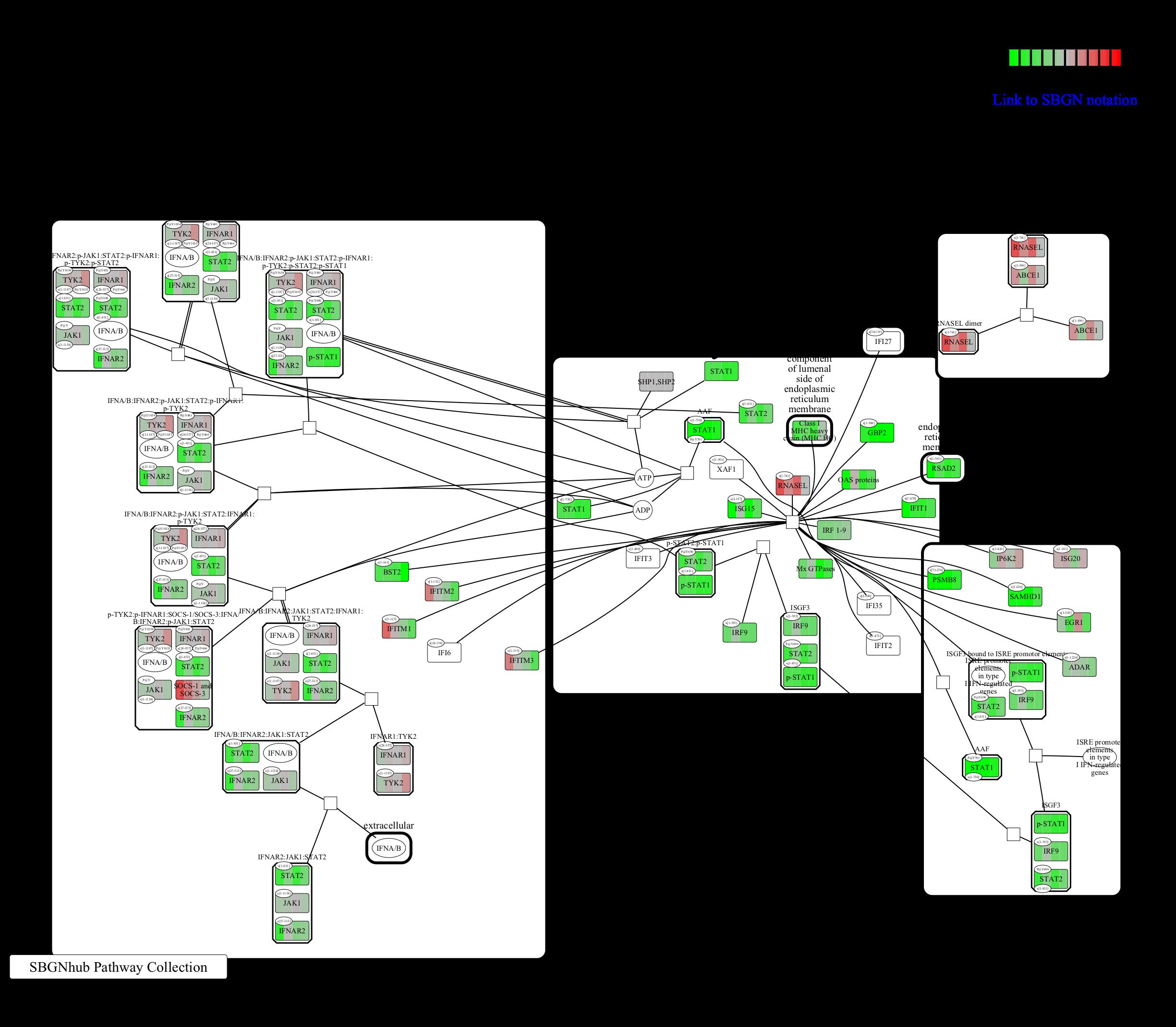 R-HSA-909733_Interferon alpha_beta signaling