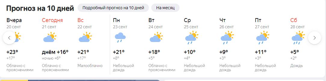 Opera-2019-09-21-220109-yandex-ru.png