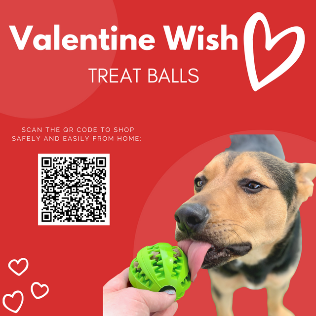Valentines-Wishes-004.png