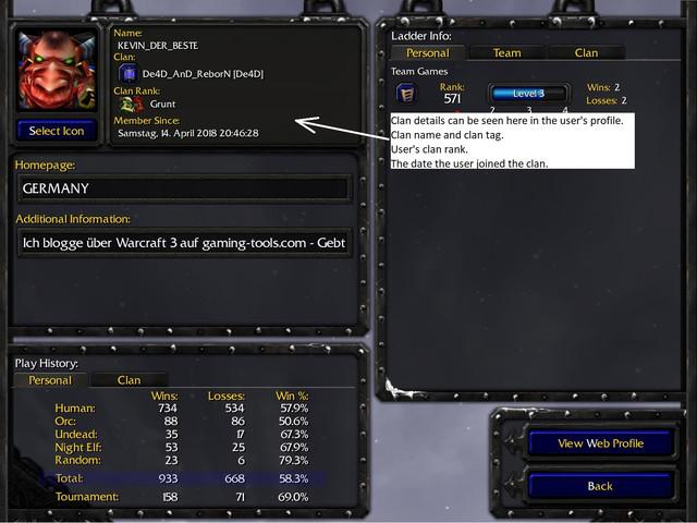wc3 user profile - D2R Clan Channels on Battle.net - Could help extend the prime of D2 [Idea Proposal]
