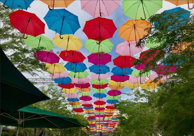umbrella-e1535551578239