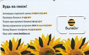 https://i.ibb.co/XJNTGDs/Sunflowers-back.jpg
