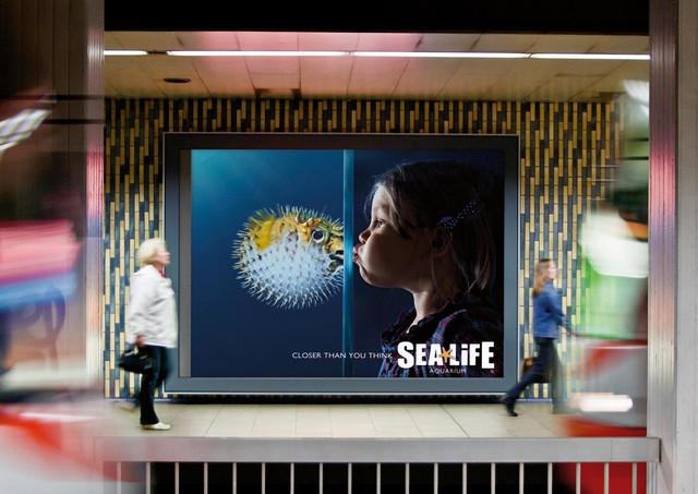 Sea-Life-Aquarium.jpg