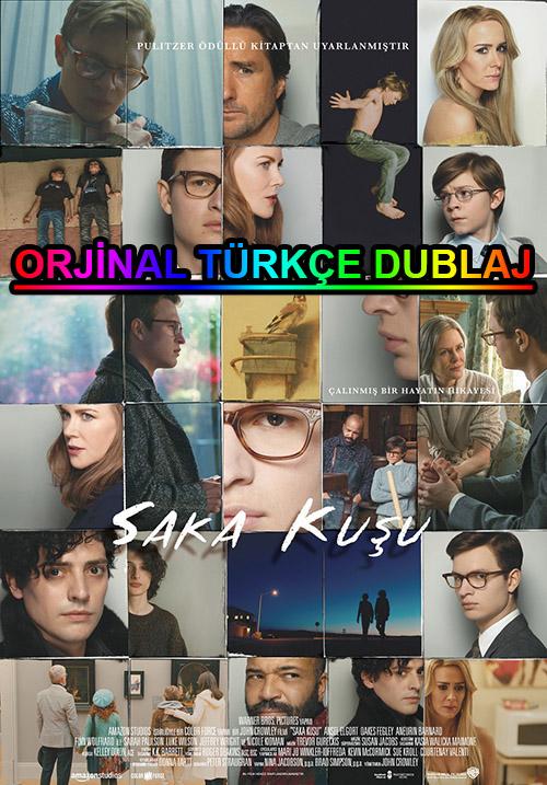 Saka Kuşu | The Goldfinch | 2019 | BDRip | XviD | Türkçe Dublaj | m720p - m1080p | BluRay | Dual | TR-EN | Tek Link