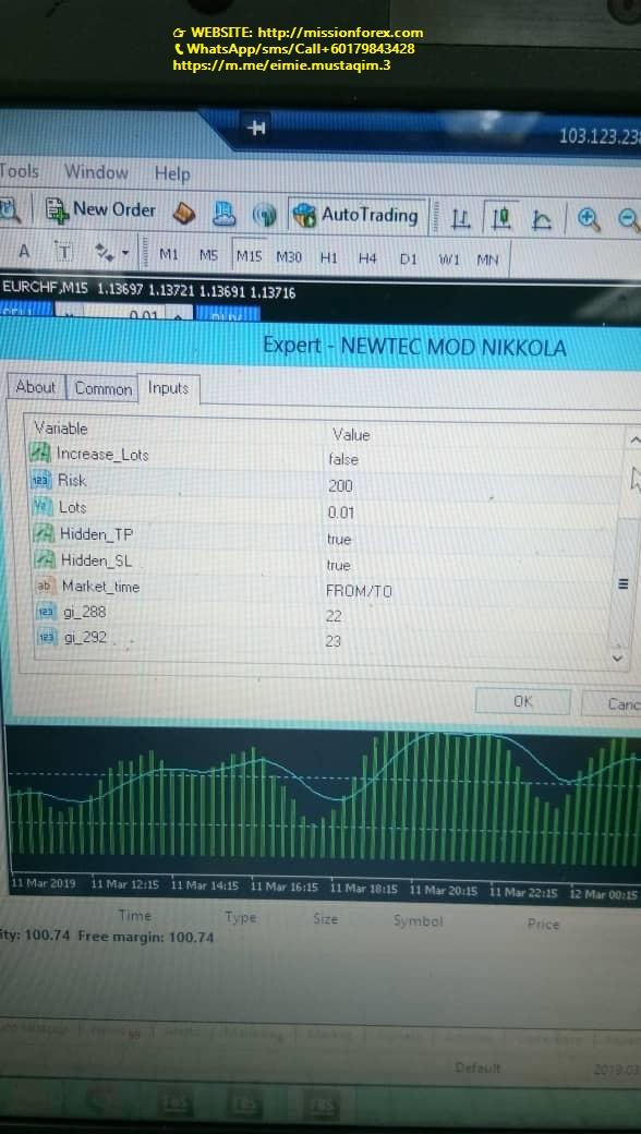 NEWTEC forex Expert Advisor 99%Winningtrades