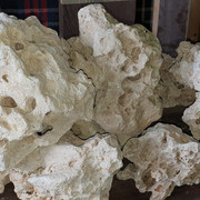 besoin d'aide pour identification roche Photo6