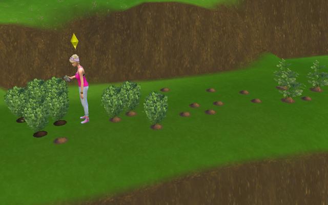 01-gardening.png
