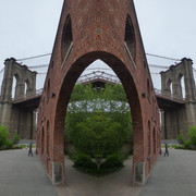 Brooklyn Bridge Bush