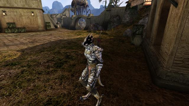 Morrowind-4-17-11-0001