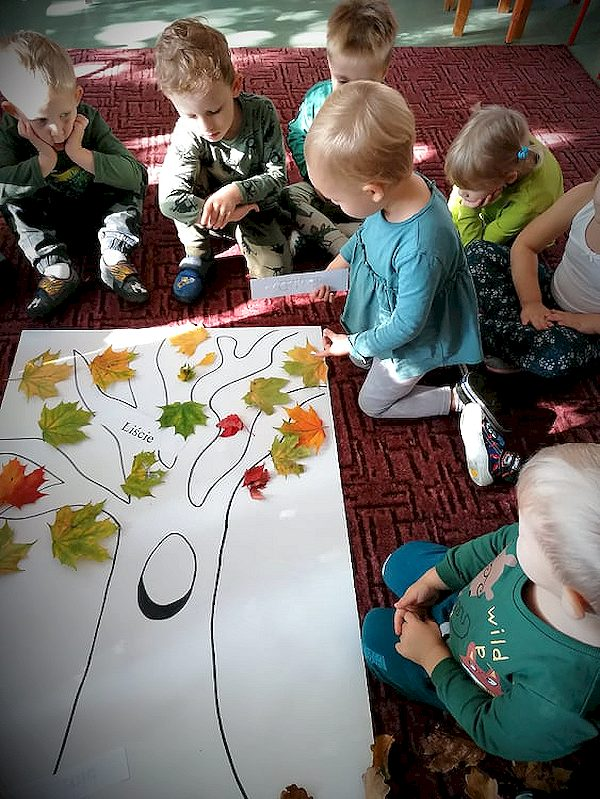 Ekolog-i-s-wie-to-drzewa-198.jpg