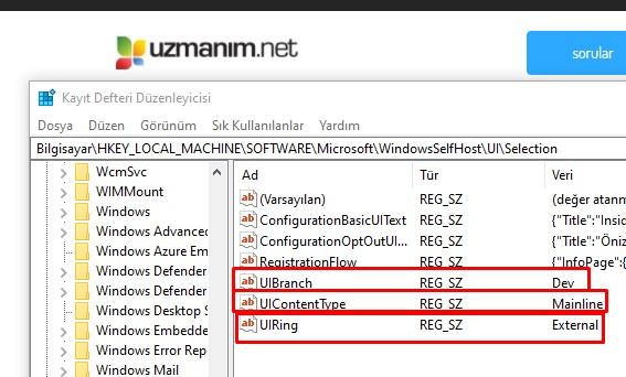 Windows insider kayıt defteri hack