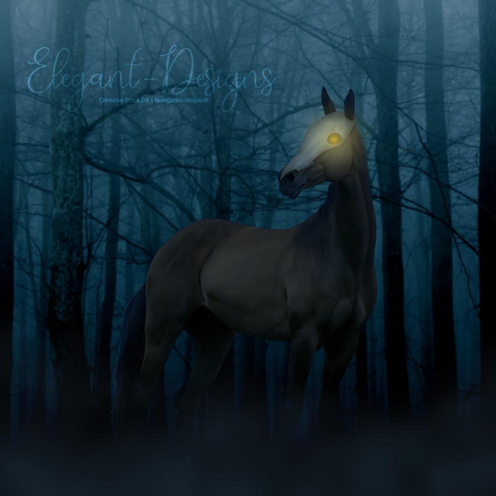 Spooky-Forest.jpg