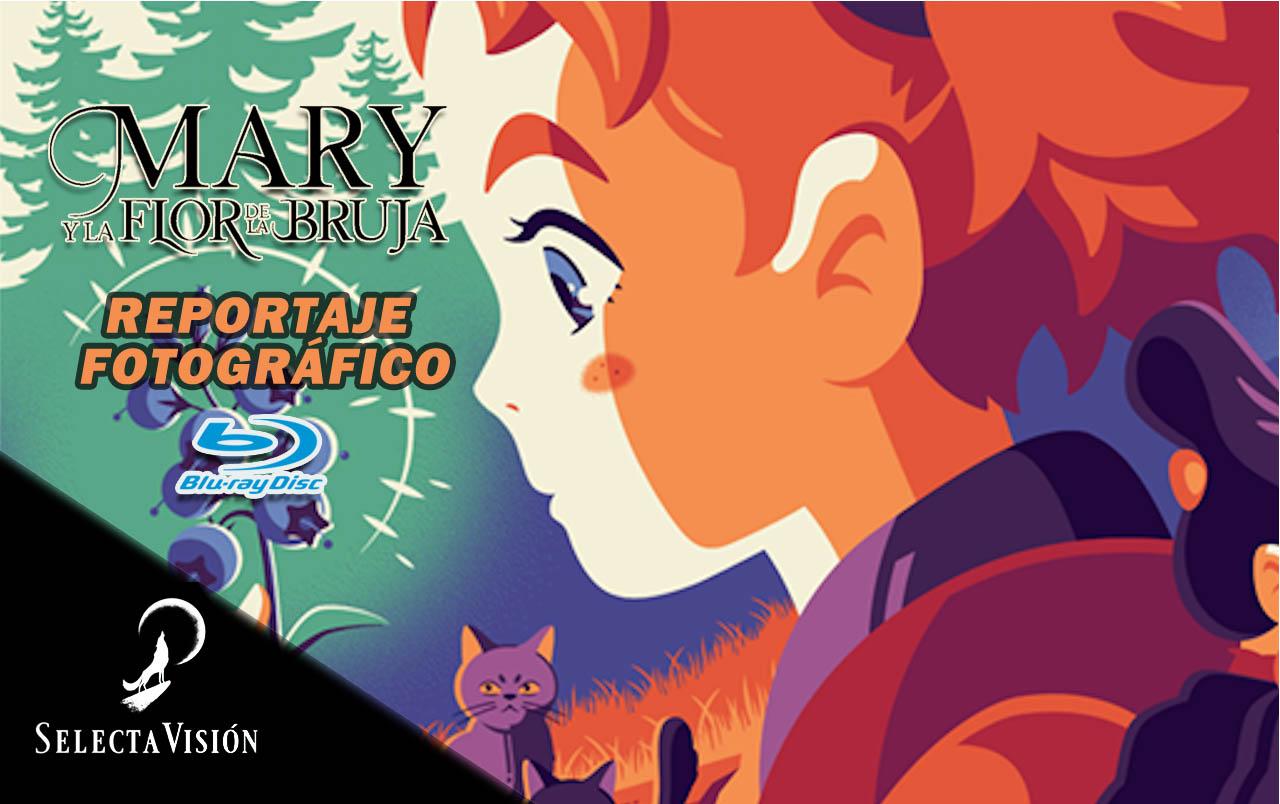 mary-banner.jpg
