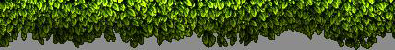 3d-leaves-after.png