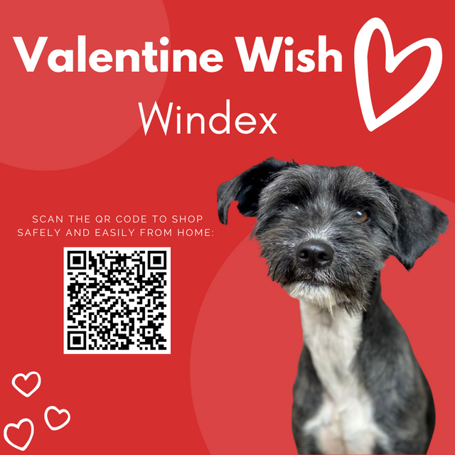 Valentines-Wishes-028.png