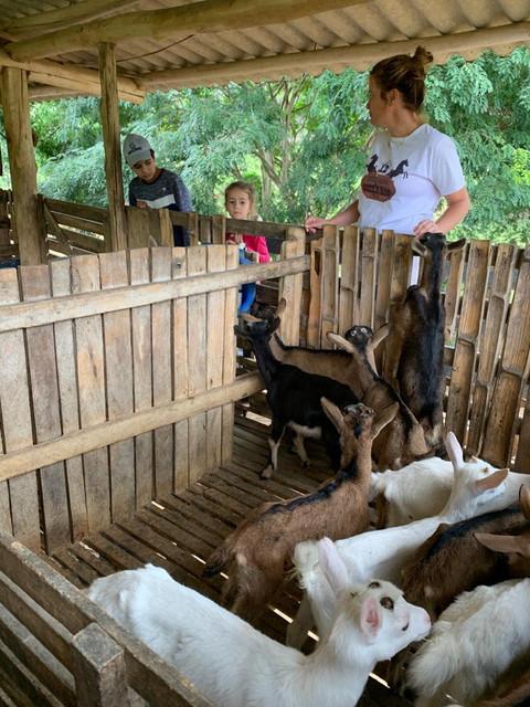 Filhos de produtores assistidos pelo ATeG Agroindústria participam de intercâmbio