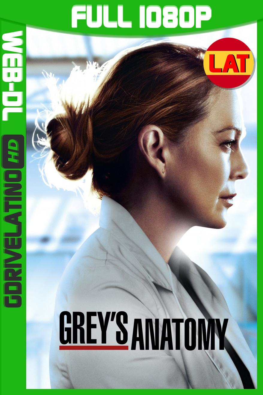 Anatomía Según Grey (2020) Temporada 16 y 17 AMZN WEB-DL 1080p Latino-Ingles