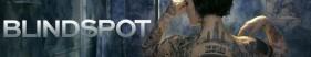 BLINDSPOT 4x17 (Sub ITA)s04e17
