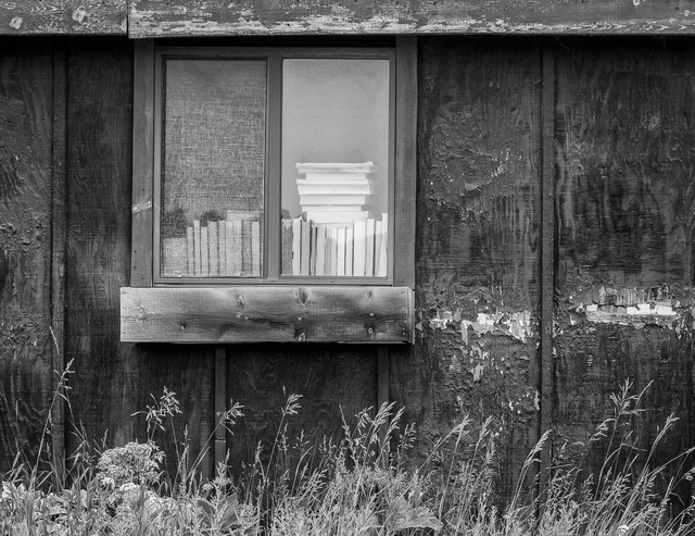 F8-A5400-Books-in-the-Window-BW2