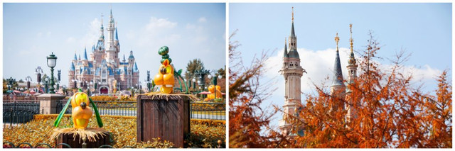 Shanghai Disney Resort en général - le coin des petites infos  - Page 10 SD2
