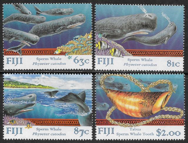 Wale-Fidschi-Sc