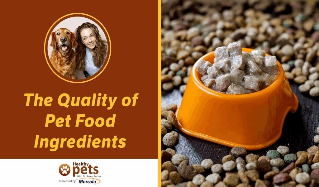 ASK from the Pet Food Store