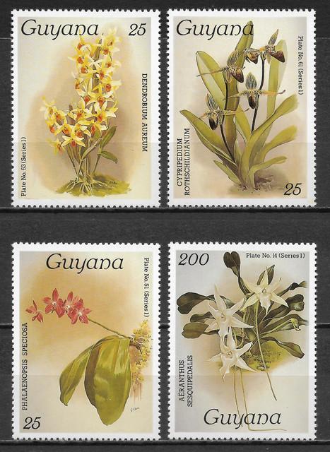 O Guyana 1441