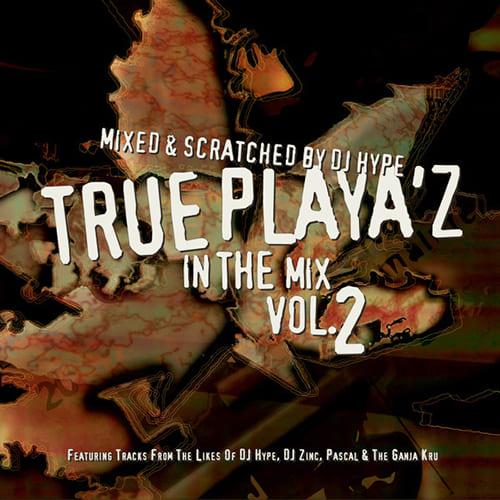 Download VA - True Playa'z In The Mix Vol. 2 mp3