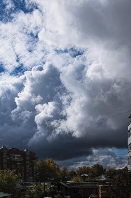 fall sky yard.jpg