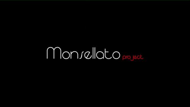 Monsellato Progect