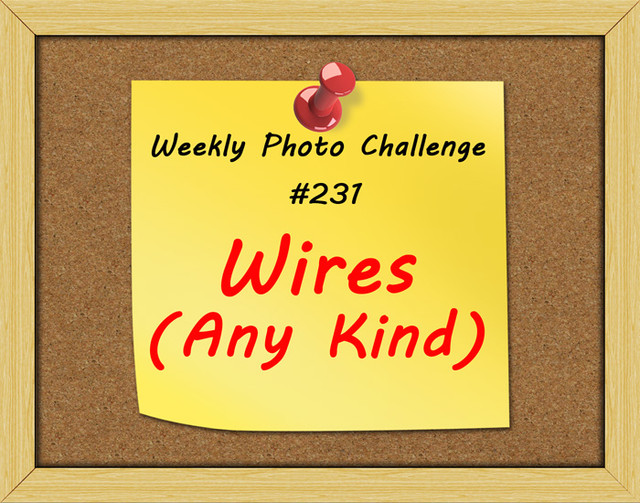 WPC-231-Wires-Any-Kind