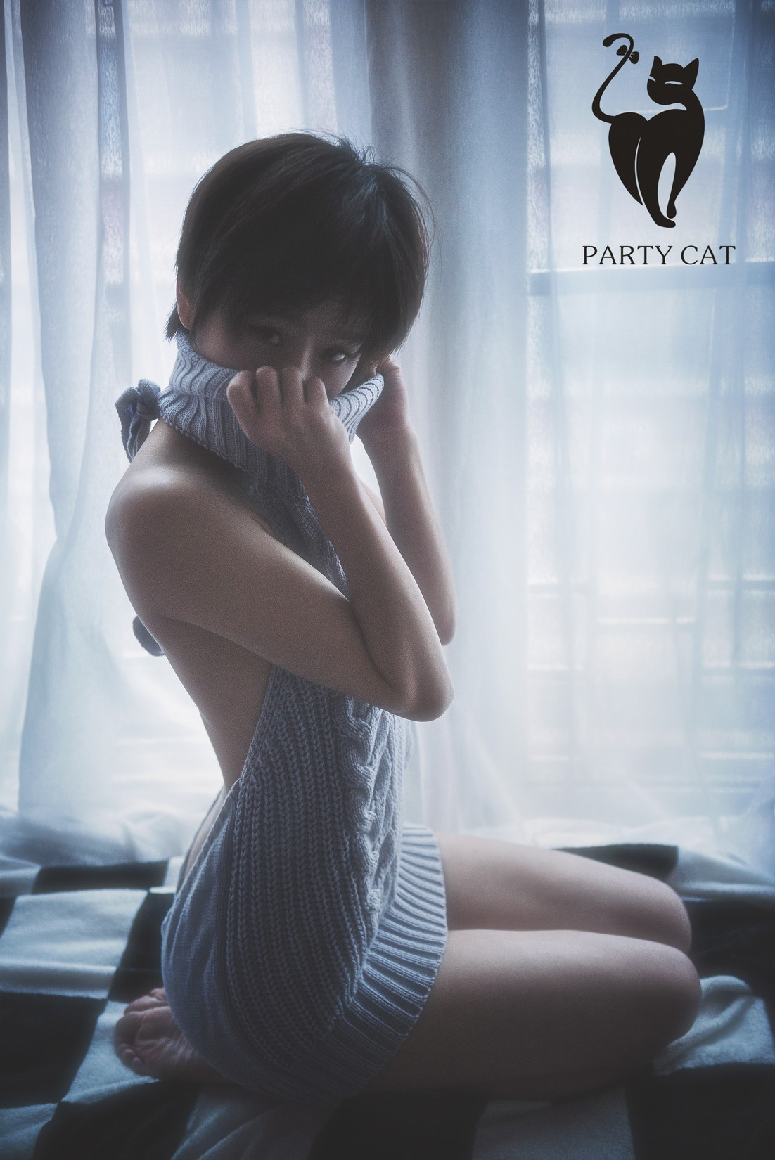 partycat015