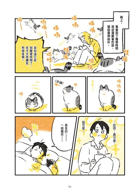尖端提供漫畫《有貓的日常》試閱 036