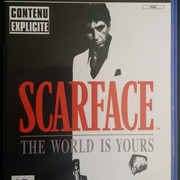 Collection Mast3rSama Scarface-The-World-Is-Yours