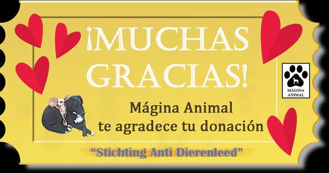 agradecimiento-stichting