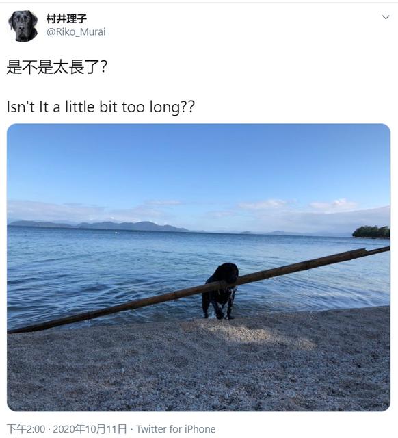 是不是太長了? Image